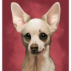 Lil Rico the chihuahua! I do pet portraits too :) you can see on my website: CharReed.com . . . . . #animals #animal #pet #dog #cat #dogs #cats #photooftheday #cute #pets #instagood #chihuahua #cute #love #nature #chihuahuas #pets_of_instagram #petstagram #petsagram #sketch #drawing #art #artstagram #commission #arts_secret #arrtshares #love_arts_help #snapwidget