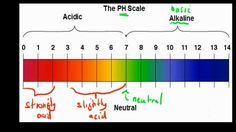 5 Things You Need to Know About Your Skin's pH Balance Nutrition Articles, Health And Fitness Articles, Fitness Nutrition, Health And Nutrition, Health And Wellness, Ph Balance In Body, Living A Healthy Life, Lemon Water, Stay In Shape