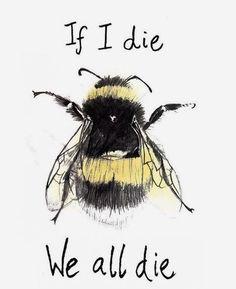 If I die we all die. No bees. No food. - If I die we all die. No bees. No food. Save Planet Earth, Save Our Earth, Save The Planet, Amazing Animals, If I Die, Bee Art, Bee Happy, Save The Bees, Bees Knees