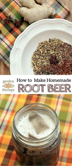 Homemade Root Beer Recipe - Garden Therapy Have you ever wondered what the flavour is in root beer? Or why it's called root beer? Well those little mysteries are unraveled for us:… Brewing Recipes, Beer Recipes, Cooking Recipes, Homebrew Recipes, Coffee Recipes, Vegetarian Recipes, Homemade Beer, Homemade Rootbeer Recipe, Ginger Beer