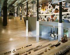 Prada store nyc by OMA/Rem Koolhaas