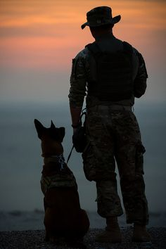 Working dogs have natural talents that are carefully honed with intensive training to perform jobs that help humans. Military Working Dogs, Military Dogs, Military Art, Military Soldier, Special Ops, Special Forces, Indian Army Wallpapers, Army Dogs, Service Dogs