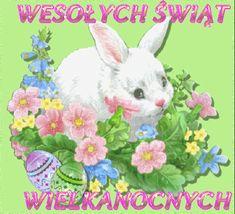 Wielkanoc: Animowane kartki wielkanocne z życzeniami Rabbit, Easter, Bunny, Rabbits, Easter Activities, Hare