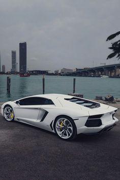 Lamborghini aventador white white rims