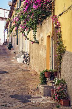 Portoferraio,Toscana,Italia