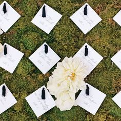 Black and White Wedding Escort Cards on Moss Backdrop