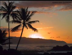Summer Madness Paul Hardcastle (HQ) No Stress At All (2014 Chill Out Mus... NICE RE-MAKE of a classic from Kool and the Gang