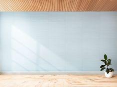 plant empty walls against backgrounds mockup rawpixel
