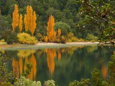 Otoño en lago Gutierrez - Patagonia - Argentina