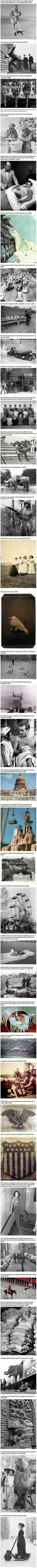 These historical photographs show we have always been a bit crazy. These historical photographs show we have always been a bit crazy. Weird Facts, Fun Facts, Random Facts, Foto Memory, History Memes, History Photos, Asian History, British History, Interesting History