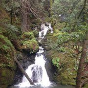 Cataract Falls - One of sooo many waterfalls here.  The higher you hike the more you'll see. - Fairfax, CA, United States