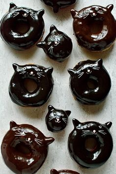 Chocolate glazed black cat doughnuts - delicious, soft, fried yeasted ring doughnuts with a silky chocolate ganache glaze & cute cat design. Funny Animals With Captions, Funny Animal Quotes, Chocolate Ganache Glaze, Chocolate Humor, Bobbing For Apples, Halloween Treats, Halloween Donuts, Kawaii Halloween, Creepy Halloween