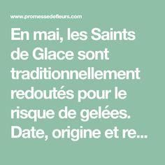 En mai, les Saints de Glace sont traditionnellement redoutés pour le risque de gelées. Date, origine et recommandations : on vous dit tout !