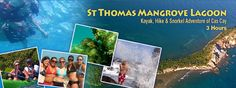 Virgin Islands Ecotours is the leading adventure eco tour company in the US Virgin Islands