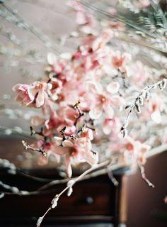 Magnolia is Spring | Saipua | Photo by Jen Huang (jenhuangblog.com)