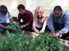 Malin Akerman on School Gardens
