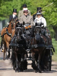 Prince Philip carriage driving on the fifth day of the Royal Windsor Horse Show in Windsor 12 May 2013