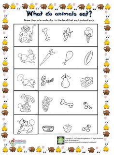What do animals eat? As we know children imaginary worlds are very huge. They think interestingly. One of this is that what animals eat. For instance; when I was a child I thought that the [. Shapes Worksheet Kindergarten, Printable Preschool Worksheets, Science Worksheets, Senses Activities, Preschool Learning Activities, Color Activities, Teach English To Kids, English Worksheets For Kids, Animal Worksheets