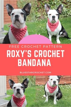 This cute Dog Bandana Free Crochet Pattern makes a perfect accessory for your fur baby. It works up easily and quickly. Cute Crochet, Easy Crochet, Quick Crochet Patterns, Foundation Single Crochet, Corner To Corner Crochet, Popular Crochet, Single Crochet Stitch, Crochet Accessories, Dog Bandana