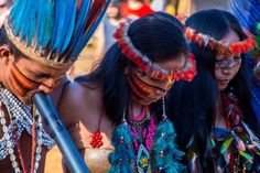 Resultado de imagem para tribo dessana