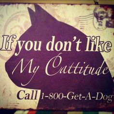 If you don't like my cattitude...