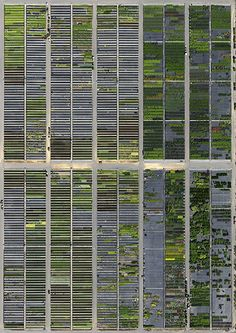 Out of the Box Magazine: Aerial Photography that Looks Like Paintings
