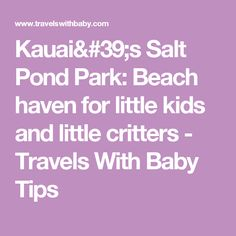 Kauai's Salt Pond Park: Beach haven for little kids and little critters - Travels With Baby Tips