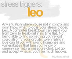 OMG!!! Anyone who knows me is laughing....computer breakdown does send me from 0 to FREAK OUT LMAO!!! Leo stress triggers