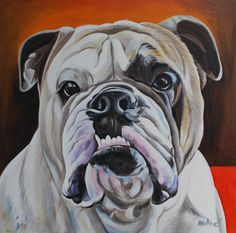 "kory's bulldog 24x24"" oil on canvas by dragoslav milic"