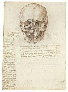 A Skull sectioned, by Leonardo da Vinci, 1489.