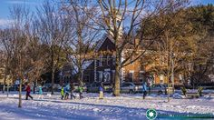 Late afternoon on the town green in Woodstock.  PLEASE show some love. Please share and like.  Feel free to visit my website - http://ift.tt/2aTNg7U