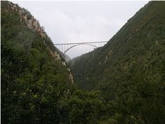 Location: Nature's Valley, South Africa   Bridge above the Bloukrans River, the Bloukrans Bridge is the highest single span arch bridge in the world. The third highest commercially operated bungee jump in the world.