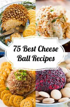 75 Best Cheese Ball Recipes - How to Make Cheese balls - Quick & Easy Recipes Recipes cheese Hawaiian Cheese Ball Recipe, Ham And Cheese Ball Recipe, Delicious Cheese Ball Recipe, Holiday Cheese Ball Recipe, Cream Cheese Ball, Cheese Ball Recipes, Appetizer Recipes, Appetizers, Salsa