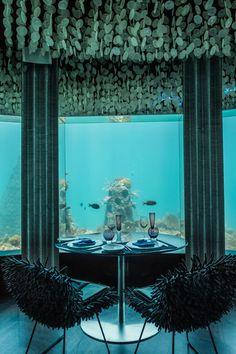 Subsix – Der erste Unterwasser-Club der Welt auf den Malediven! http://www.travelbook.de/welt/subsix-der-unterwasser-club-der-malediven-706777.html