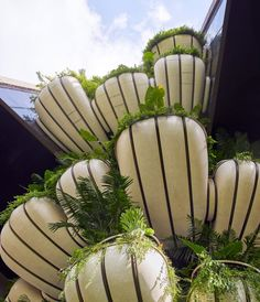 EDEN is a 104.5-metre-tall apartment building in the Newton district of Singapore, which comprises a vertical stack of homes that each have a garden. Sky Garden, Lush Garden, Thomas Heatherwick, Walnut Doors, Concrete Facade, Built Environment, Greenery, Studio, Singapore