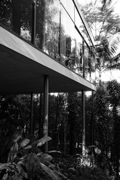 Casa de Vidro de Lina Bo Bardi, SP, Brasil