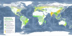 the world from a forest restoration perspective