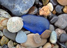 Cobalt blues and deep blues are among the most desirable colors of beach glass and when we found this one it made our day. See more...