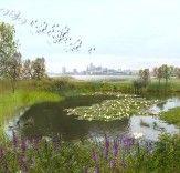 Port Sunlight River Park: Former Landfill Reborn as Beautiful Park and Wildlife Habitat