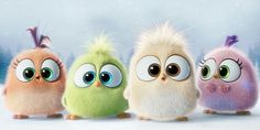 """Hatchlings"",angry birds the movies season's greeting"