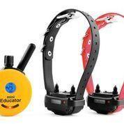 ET-302 Two Dog Mini Educator E-Collar 1/2 Mile Remote Dog Trainer