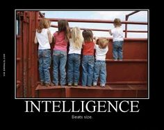 Intelligence Beats Size - Damn! LOL