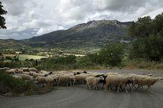 TO AGIA GALINI, RETHYMNO, CRETE, GREECE | Flickr - Photo Sharing!