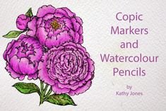 copic oz: Stamping, Copics and Watercolour Pencils