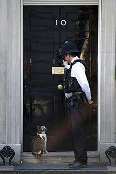 A policeman knocks on the door of Number 10 Downing Street to let in Larry the cat in London March 26, 2012. There is something quite awesome about this.