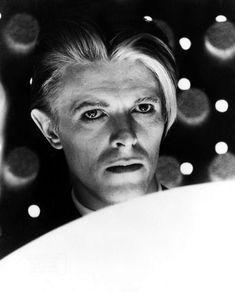 "vezzipuss.tumblr.com — David Bowie, ""TMWFTE"", Circa 76  〰️🚀〰️"