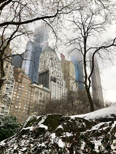 Printing Ideas Useful Travel Destinations Vacations Central Park, Empire State Building, New York Winter, City That Never Sleeps, Vacation Destinations, Vacations, City Break, Solo Travel, Travel Pictures