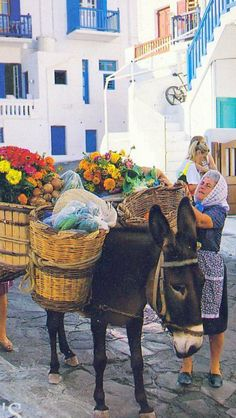 #Mykonos and the #donkey , We really miss it!