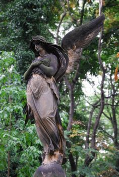 Image of angel statue at old historic cemetery Olsany in Prague. Cemetery Angels, Cemetery Statues, Cemetery Art, Angels Among Us, Angels And Demons, Statue Ange, Old Cemeteries, Graveyards, Steinmetz