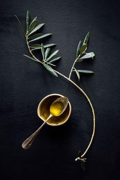 Olives groves are few and far between in the Basque Country, due to the terrain and climate. Olives and extra-virgen olive oil, however, play an integral role in Basque cuisine. Photo: Aiala Hernando